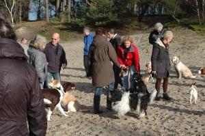 hondenclub wandeling 10-1-16 (113)