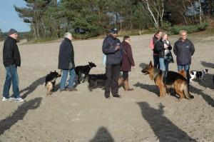 hondenclub wandeling 10-1-16 (114)