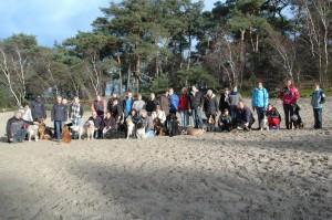 hondenclub wandeling 10-1-16 (120)