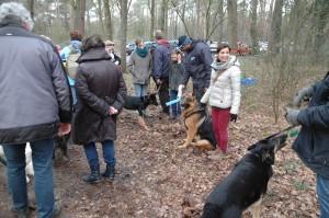 hondenclub wandeling 10-1-16 (154)