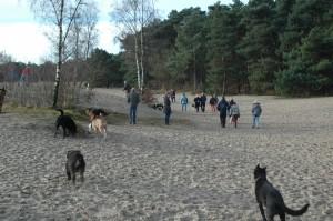hondenclub wandeling 10-1-16 (32)