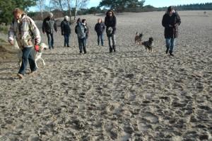 hondenclub wandeling 10-1-16 (33)
