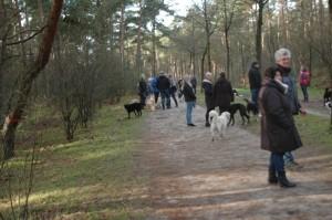hondenclub wandeling 10-1-16 (36)