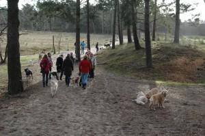 hondenclub wandeling 10-1-16 (67)