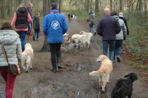hondenclub wandeling 10-1-16 (78)