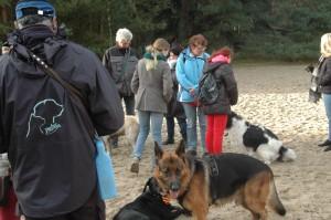 hondenclub wandeling 10-1-16 (95)